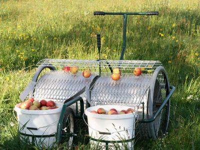 Der Apfelsammler von Huemer - robust, einfach, preiswert