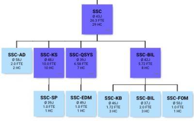 ORGA_MAN ermöglicht eine hierarchische Altersstrukturanalyse mit Drill-Down