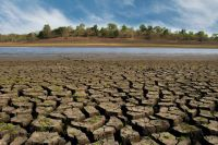 Dürre, Hitze und trockene Böden in Deutschland – Waldsterben, Wüstenausbreitung und Wüstenbildung in Europa