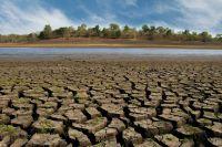 Dürre und Hitze in Deutschland