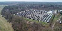 Erfolg: Letzte Nerzfarm Sachsen-Anhalts endlich geschlossen