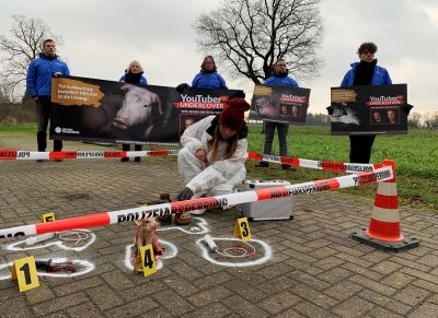 Ferkelzuchtbetrieb bei Drensteinfurt wird zum Tatort