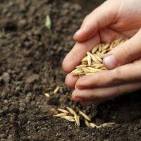 Humusreich - für gesunde Böden, gesundes Wachstum, gesunde Tiere, gesunden Ertrag und optimale Nutzung.