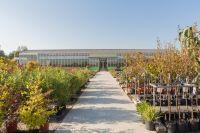 LE Palms und Urban Greening Camp Startup Projekte für Artenschutz, Klimaschutz und Umweltschutz
