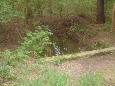 Gewässer im Projektgebiet