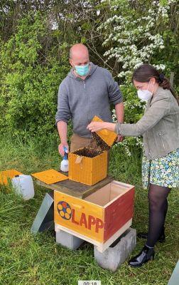 Imker Tobias Miltenberger und Joelle Mittnacht von der Lapp Immobilien GmbH geben dem Bienenvolk ein neues Zuhause