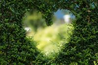 Nachhaltigkeit unterwegs: Das stille Örtchen an abgelegenen Orten und auf Reisen