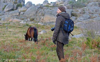 Sabine Bengtsson in Portugal unter Wildpferden