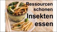 Ressourcen schonen - Insekten essen