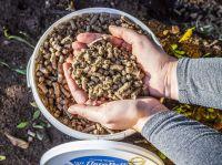 Schafwollpellets als organischer Dünger sind Ergebnis zertifizierter Forschung