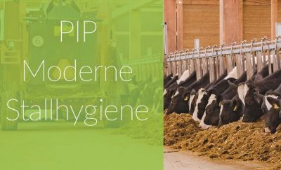 PIP Moderne Stallhygiene