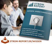 Strom Report bringt ersten Energie-Ratgeber heraus