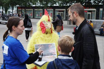 Tierrechtler verkleidet als Huhn machen Eier-Umfrage in Magdeburg, Dresden, Leipzig und Chemnitz