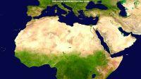 Trillion Trees Initiative für besseren Klimaschutz, Umweltschutz und Artenschutz weltweit