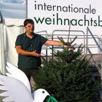 Umweltfreundliche Weihnachtsbäume