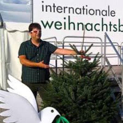 Weihnachtsbaum Zentrale