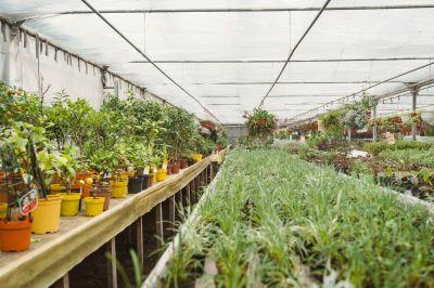 Urban Greening Camp Leipzig - Urban Farming Beispiel 2021