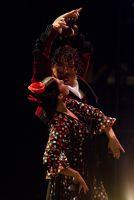 """""""Momentos"""" - ein moderne Flamenco-Inszenierung im Theater Münster"""