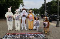 Deutsches Tierschutzbüro demonstriert vor Berliner Fashion Week
