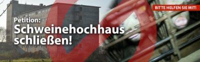 Deutsches Tierschutzbüro e.V. erstattet Strafanzeige gegen Schweinehochhaus & startet Petition