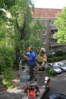 Deutsches Tierschutzbüro fordert: Berliner Feuerwehr soll Tieren in Not kostenfrei helfen