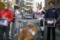 Eingesperrtes Osterkaninchen sorgte für Aufsehen