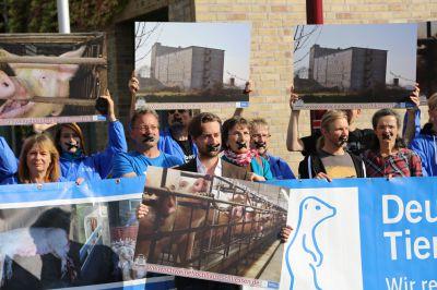 Tierschützer demonstrieren für die Schließung des Schweinehochhauses