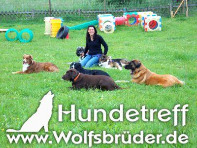 Maike Velte - Hundeschule Wolfsbrüder Marburg-Biedenkopf-Dautphetal