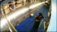 Milchbetrieb-Skandal bei Flensburg: Sohn des Landwirts misshandelt Kühe und greift ProSieben Kamera-Team an