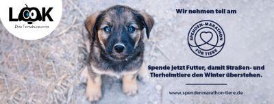 Look Tierschutzverein Deutschland e.V. nimmt in diesem Jahr am jährlichen Spenden-Marathon für Tiere teil.