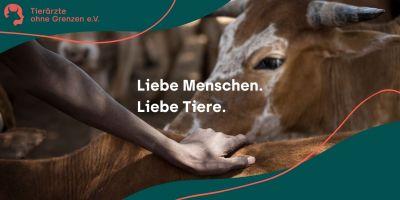 Zeitgemäß, Emotional, Selbstbewusst: Das neue Corporate Design von Tierärzte ohne Grenzen e. V.