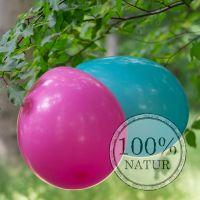 Bio-Luftballons von Natur-Luftballons.de sind vollständig biologisch abbaubar