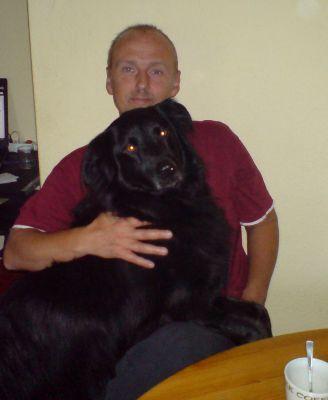 Hundehaftpflicht Versicherungen im online Vergleich