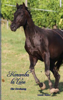 Karamba la Lune - ein Pferderoman für junge LeserInnen