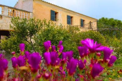 Finden und buchen sie ihr Traum Ferienhaus für ihren Urlaub auf Mallorca