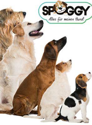 Spoggy - die APP für alle Hundefreunde