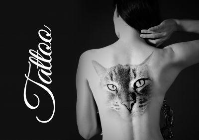 """Tattoo-Domains: Alles zu """"Tätowierung"""""""