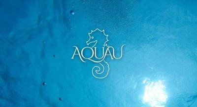 Das Logo von AquaU