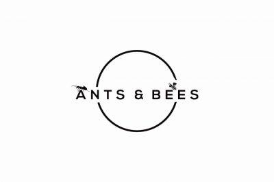 Ants&Bees gemeinsam im Team erfolgreich