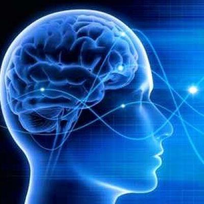 Die Padberg Beratung nutzt die Neurowissenschaften im Management für Industrie 4.0
