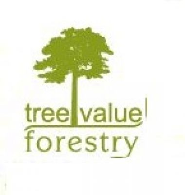 tree value forestry GmbH