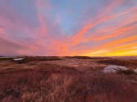 Matador Mining: Günstige Chance im Neufundland-Goldrausch dabei zu sein