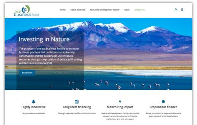 Website eco.business Fund