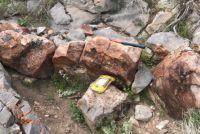 Pasinex Resources startet Exploration des Zinkprojekts Gunman in Nevada