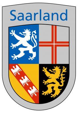Google & Co. wird die Saarland-Domains bei lokalen Suchanfragen bevorzugen