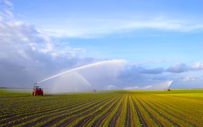 Brasilien Agraranbau