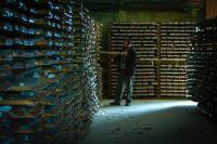 Geologe vor Bohrkernen von Goliath; Foto: Treasury Metals