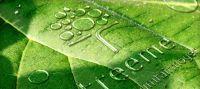 Treeme - Sicherheit und Transparenz