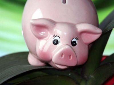 Grüne Geldanlage überzeugt Anleger!