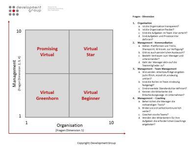 DMG Development Group: Virtual Management Index